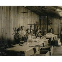 1920 Press Photo Carnegie Institute Geophysical Laboratory