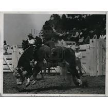 1935 Press Photo 24th Annual California rodeo cowboy on a bull