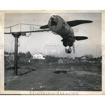 1944 Press Photo Alvin Austin performs daredevil stunts with his practice plane