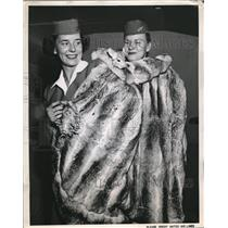 1951 Press Photo Stewardesses Frances Hall & Dorothy Ferenz in Chinchilla Wrap