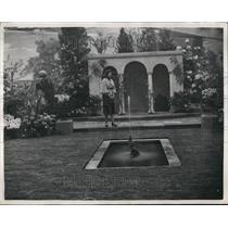 1953 Press Photo Garden display by whitelegg Gardens - KSB58995
