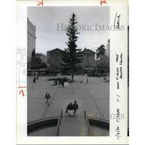 1990 Press Photo 101 Foot Douglas Fir In Pioneer Courthouse Square - ora38487