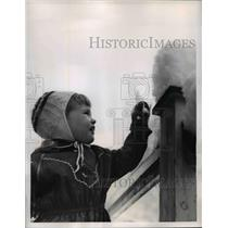 1956 Press Photo Clarendon NH Denise Titchen plays with new fallen snow