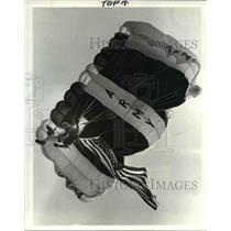 1983 Press Photo Sgt. Mike Lasher of the United States Golden Knights parachutes