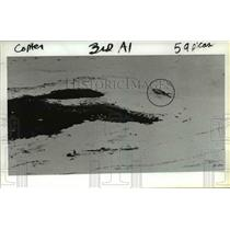 1981 Press Photo Helicopter crash at Mount St. Helens' crater Friday. - orb15769