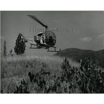 1967 Press Photo Helicopter Chases trail Missoula lifts off with grass seed