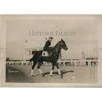 1920 Press Photo Racehorse Damask with a exercise boy at a track workout