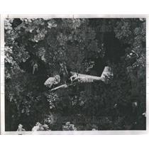 1968 Press Photo Airplane Crashes Barrington Hills - RRR42577