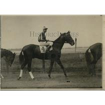 1921 Press Photo The Bohemian Johnson Up - net18711