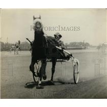 1921 Press Photo Trotter horse Mr Jefferson with driver at a track - net25494
