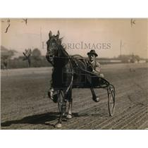 1920 Press Photo Driver Sonny Murphy & trotter Charley Rex at a track