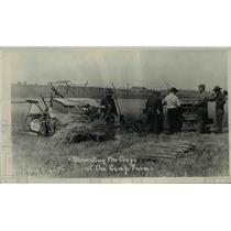 1920 Press Photo Harvesting the crops at Camp Farm at Illinois - nef33196