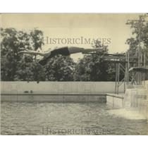1922 Press Photo swimmer Eleanor Smith in mid dive - net31910