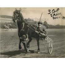 1920 Press Photo trotter horse Peter Coley and driver Charley Valentine