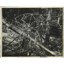 1934 Press Photo Hidden in Catskills Plane Missing 40 Hours Had Crashed 7 Killed