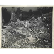 1941 Press Photo Curtiss P-40 Plane Blazes in Field Northeast of Eastport 1 Dead