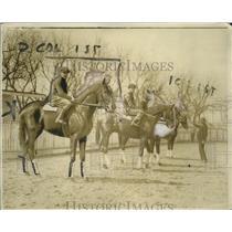 1920 Press Photo Racehorses Lofts Shing, Honocorna ready for a race - neo13664