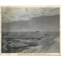 1931 Press Photo Ice Field off Horse Island on Northern Coast Newfounland.