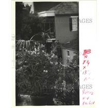 1992 Press Photo Butterfly Plants on French Quarter Balcony