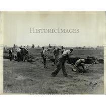 1931 Press Photo sod crew Farm Henry Ford property cut - RRX62985