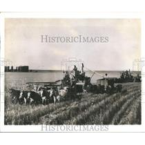 1960 Press Photo Horse pulled equipment at Farms in Argentina - hca03697