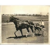 "1934 Press Photo Mrs. RJ Reynolds Is Shown Piloting Her Trotter ""Miss Lena"""