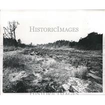 1967 Press Photo Acre Homes Subdivision Dumps, Houston - hca04172