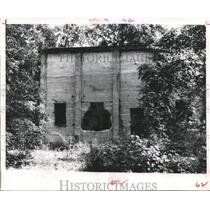 1963 Press Photo Ruins of a Jasper County ghost town, Aldridge, Texas