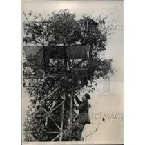 1940 Press Photo British Royal Air Force Observer in Watch Tower, World War II