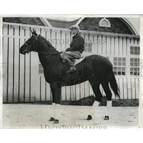 1932 Press Photo Towee The Sagamore Stable Entry for 58th Kentucky Derby