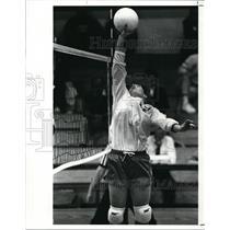 1989 Press Photo Fairview Volleyball player-Beth Schmidt - cvb43367