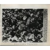 1955 Press Photo Chinese civilians on deck of US ship at evacuation at Tachen