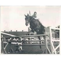 1931 Press Photo Detroit MI Society Sportsman Walter Briggs Jr - rkf15009