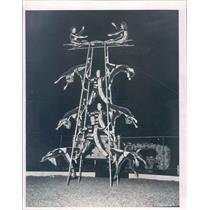 1956 Press Photo Sarasota FL Sarasota Hi Sailor Circus Roman Ladder Act