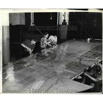 Press Photo Wing Tip of plane - nem48589