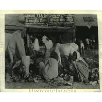 1943 Press Photo An army of homeless people in Calcutta are starving to death.