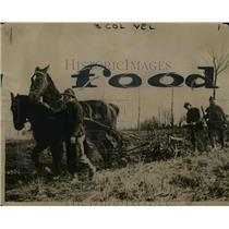 1918 Press Photo Belgian Soldiers Called to Cultivate Farms During Rest Periods