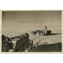 1934 Press Photo Martin Lindsay driving dog sled during Arctic Expedition