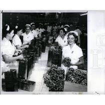 1960 Press Photo Walker Wrapping Line