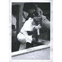 1968 Press Photo Mayo Smith Detroit Tigers Dugout - RRQ34151