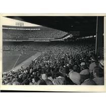 1984 Press Photo Milwaukee Brewers - Brewer Fans at Game - mjt01729