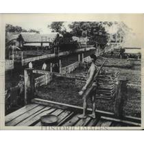 1953 Press Photo Tribesman standing guard over his hamlet in Tan Hiep