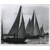 1960 Press Photo Yachts cross starting line during Queen's Cup race