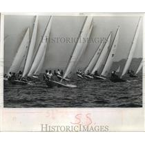 1963 Press Photo Inland Lake sailboats race on Lake Mendota during regatta