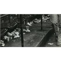 1982 Press Photo Milwaukee Brewers - Garbage at County Stadium After Playoffs