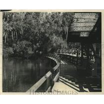 1947 Press Photo Natures Fish Bowl, chief source of the Homosassa River