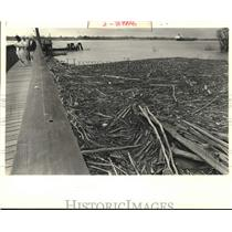 1989 Press Photo Buckets and bottles jam against shoreline at LaSalle's Landing