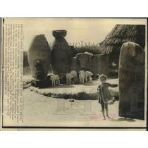 1966 Press Photo Phalodi villages abandoned because wheat storage empty