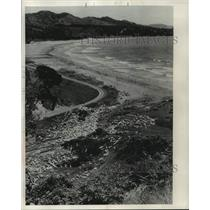 1952 Press Photo View from hills above Oruaiti beach looking down on sheep.