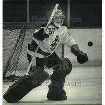 1982 Press Photo Rich Sirois, the Milwaukee Admirals hockey goalie - mjc36287